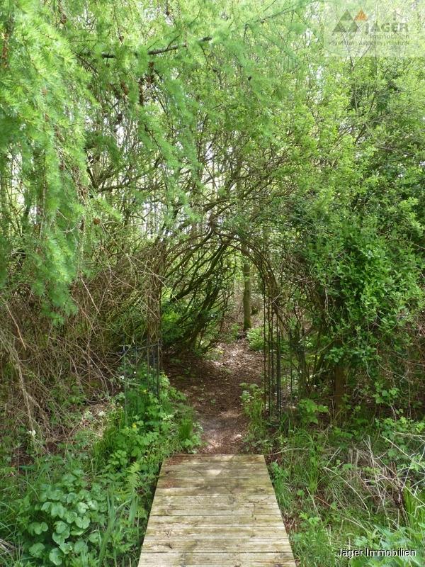 Zugang Wald