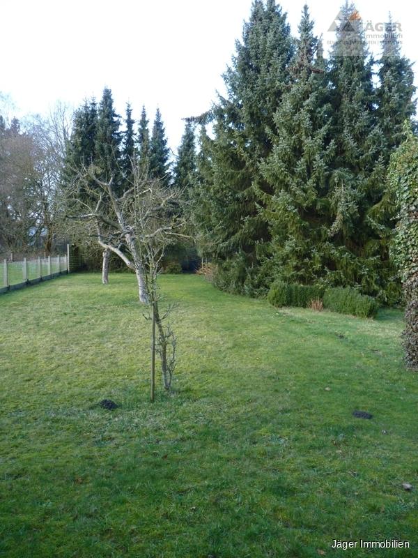 weiterer Gartenbereich